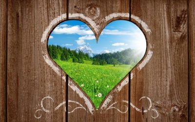 A szeretet nem luxus: Az önbántalmazó és önbüntető programok felülírása